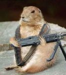 groundhog warrior.jpg